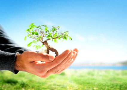 Logique-bioclimatique-points-clés-habitat