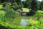 Bassin_de_jardin_Atelier de l'Habitat