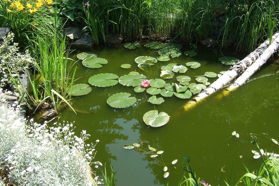 bassin creusé - Atelier de l'Habitat