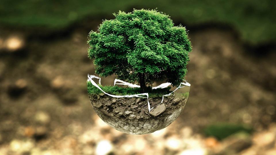 environnement protection