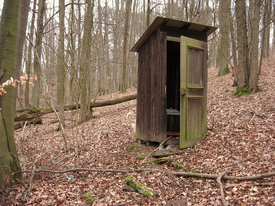 Plus besoin de les cacher, les toilettes sont maintenant une pièce à part entière