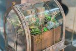 terrarrium intérieur Atelier de l'habitat